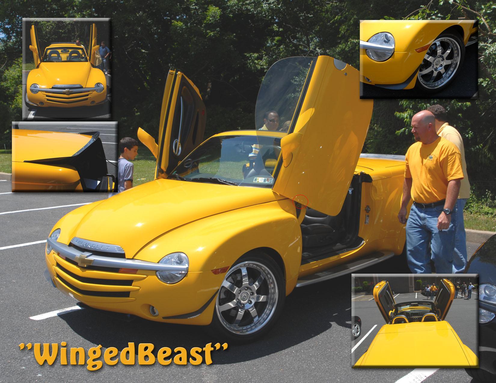 Click image for larger version Name: lambo.JPG Views: 4118 Size: 269.5 & Lambo Doors - Chevy SSR Forum Pezcame.Com