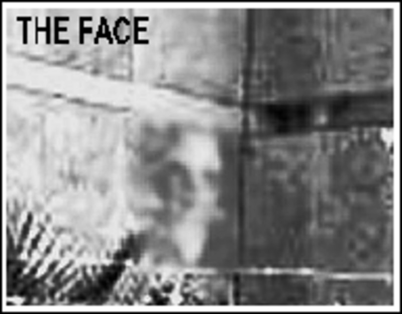 Ghost Face In Galveston-pic-three.jpg